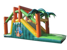 Toboggan jungle
