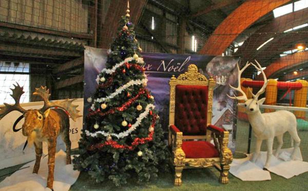 Louez dès maintenant l'arbre de Noël de votre entreprise !
